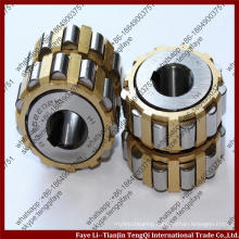Cylindricail structure China 100752904 double row Overall Eccentric Roller Bearing special bearing for reducer