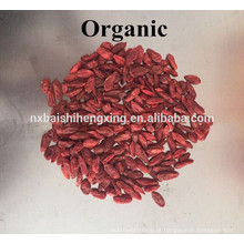 Ningxia goji berry frutas secas Ningxia gouqi Berries goji orgainc preço