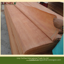 4′x8′x0.3mm Natural Plb Veneers for Indian Market