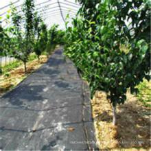 Ajardine la tela tejida de la cubierta de tierra de los PP para controlar Weed