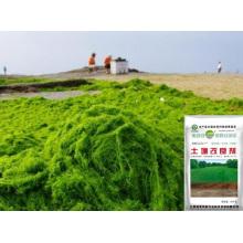 Extracto de algas ferrosas bio bio bio fertilizante para condicionador de solo