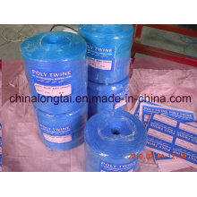 PP Rope Using for Packing (ANSHI04)