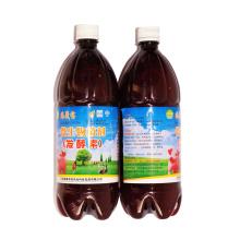 Extracto de algas biológicas para alimentación animal (lecho de fermentación)