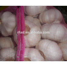 Shangdong 10kg/ carton pure white garlics on sale