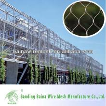 Esgrima usado para la venta Made in China