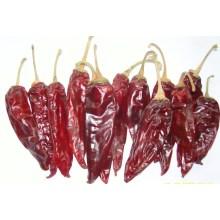 Gute Qualität für Amerika Red Chili