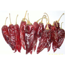 New Crop American Red Chili