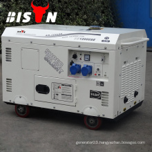BISON China Taizhou 8KVAt 8kw Copper Wire AC Single Phase 8000 Watt Silent Diesel Generator
