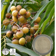 Natural Pure Sapindus Mukorossi Extract 40%, 70% Saponins; Ratio Extract