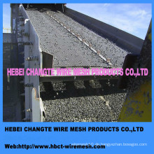 High Carbon Steel Crimped Wire Mesh von Factroy