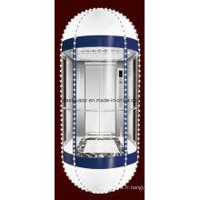 Ce ascenseur panoramique d'observation approuvé (JQ-A047)