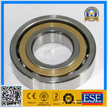 China Factory Angular Contact Ball Bearing 7313bm