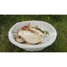 Grade C1 Secado Boletus Pure Natural Raw