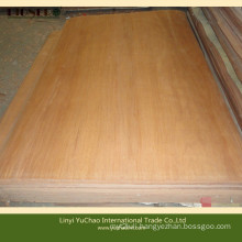4′x6′x0.3mm Natural Wood Plb Rotary Cut Veneers