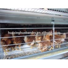 Cage automatique d'élevage de poulet