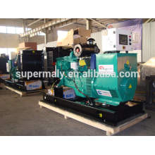 China Yangdong 12kw Diesel-Generator