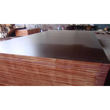 Hot Sale! Film Faced Plywood or Marine Wood