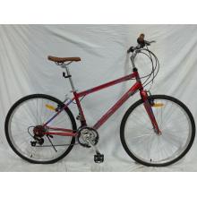 Südamerika Gute Qualität 18speed Urban Fahrrad (FP-CB-051)