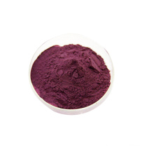 2020 New product Factory Supplier Natural 25% Antioxidant Cranberry Extract