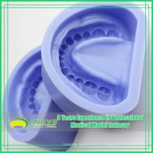 EN-G3 molde de goma azul de alta calidad del silicio para los bastidores de arcos edéntulos
