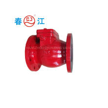 Cast Iron/ Ductile Iron Swing Check Valve for Fire System