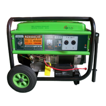 Portable Gasoline brush Gnerator With AVR