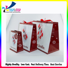 Christmas Paper Gift Bag with Shinny Finishing