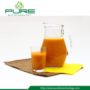 Organic Sea Buckthorn Juice With Certificate