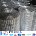 hot sale electro galvanized welded wire mesh ( ISO factory )