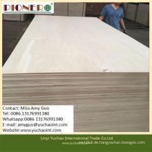 5mm Cc / Cc Grade Pappel Sperrholz speziell für die Verpackung
