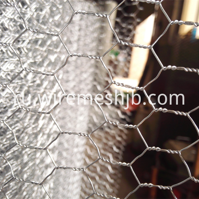 Hexagonal Wire Fencing