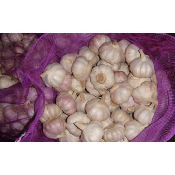 Whole garlic in a normal bag
