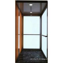 Maschine geräumige Villa Aufzug mit Glas Auto Wand