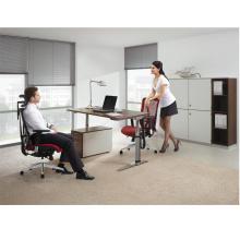 Chaise de bureau ergonomique avec l'appui-tête pour le bureau exécutif / chaise ergonomique