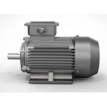 Explosion Proof Three Phase Asynchronous Electric Motor