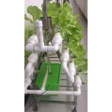 Garden Home NTF Indoor Hydroponic Grwoing System