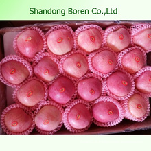 2015 Fresh Juicy FUJI Apple De Shandong Boren