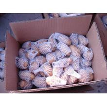 Bonne qualité Pomme de terre chinoise fraîche (100g-200g)