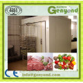 Vegetables Equipment / Quick Freezing Equipment