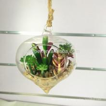 vívida pendurado vidro claro artificial planta suculenta bonsai