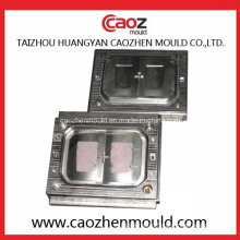 High Quality/Plastic Injection Reflective Mirror Mould