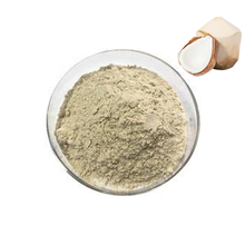 Manufactory Price Pure Natural Coconut Fruit Extract Powder