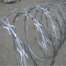 Hot Dipped Galvanized Razor Barbed Wire BTO-22