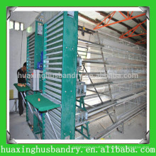 china popular and good quality poultry mesh plant