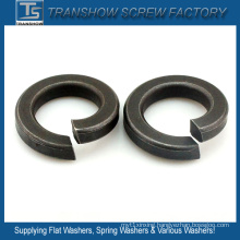 DIN127 DIN128 GOST6402 ANSI B18.21.1 Spring Washers