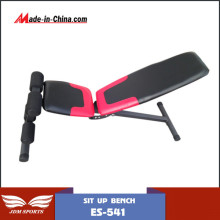 Professional Sit up Bench Commercial Sit up Bench (ES-541)