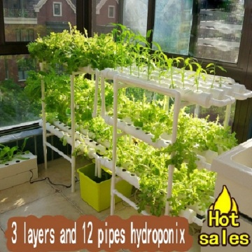 Indoor Grow Kit Hydroponics per la crescita Plat