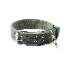 Double pin buckle 40mm canvas belt of pet collar
