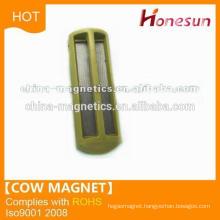 D35x100 cow magnet