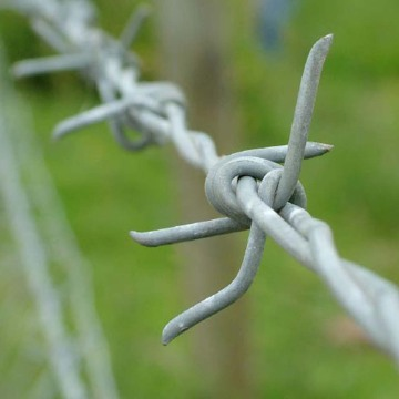 4 Point Barbed Wire